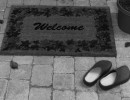 Welcome Newcomers